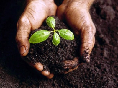 zahradna-zemina